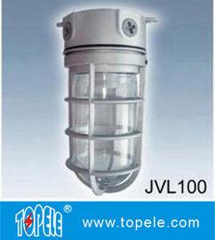 100W 220V Brozen, Gray IP65 Die-Cast Aluminum Philips Vapor Proof Lights, Led Flood Lights